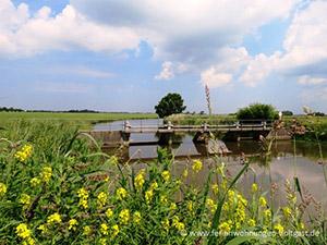 Angeln Ostfriesland